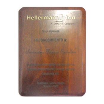 HELLERMANN TYTON RECONOCIMIENTO A  SUMINISTROS TÉCNICOS EXCLUSIVOS EN PRENDA DE NUESTRA GRATITUD A SU COMPROMISO DESARROLLO PROFESIONALISMO Y AMISTAD BRINDADOS DURANTE ENTE AÑO 2002. MARZO 2003