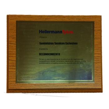 """RECONOCIMIENTO OTORGADO POR: """"HellermannTyton"""" 2012"""